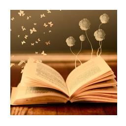 Libros dinámicas